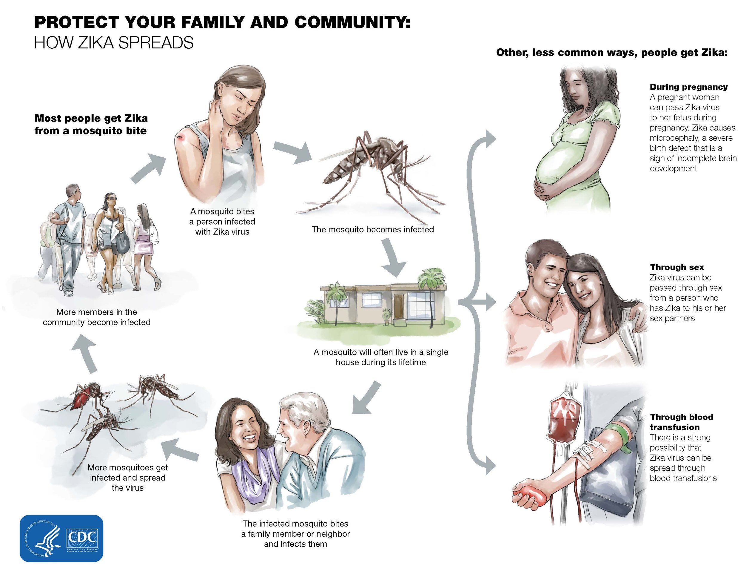 Protect Your Family and Community