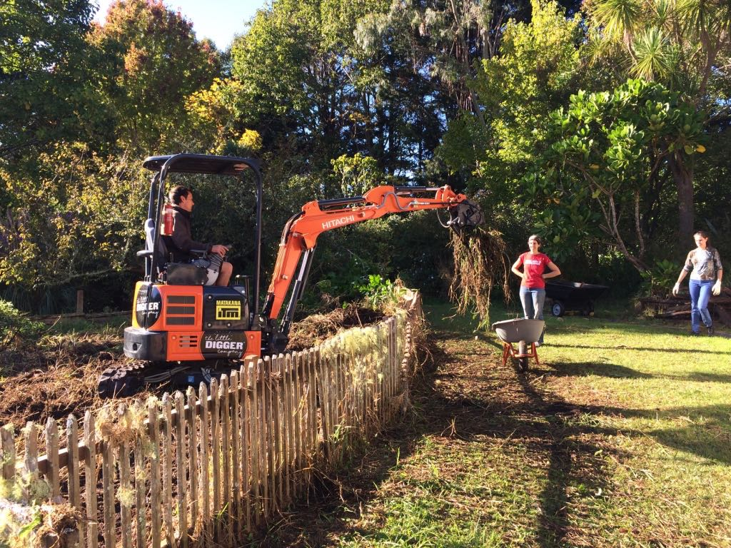 Matakana: Rainbow Valley Farm    Taking to the Kikuyu (creeping, perennial, hairy, mat-forming grass) to unearth the vegetable patch