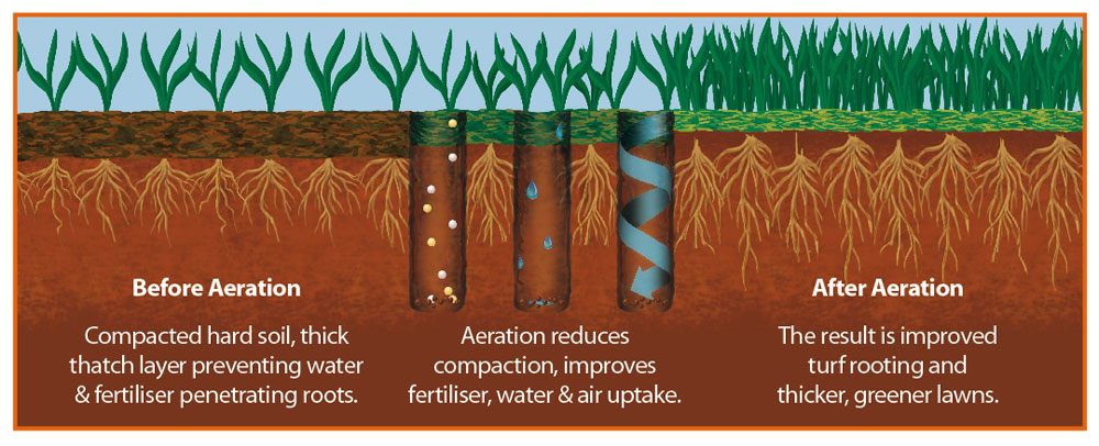 Image via https://www.greensleeves-uk.com/img/services/aeration_diagram.jpg