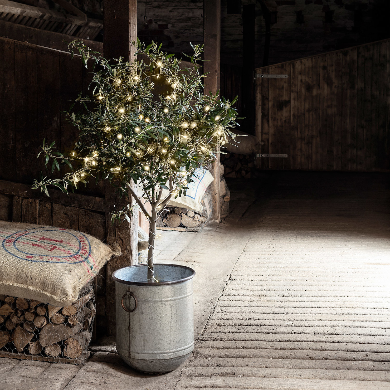 Decorate tree with lights. Image via  HERE