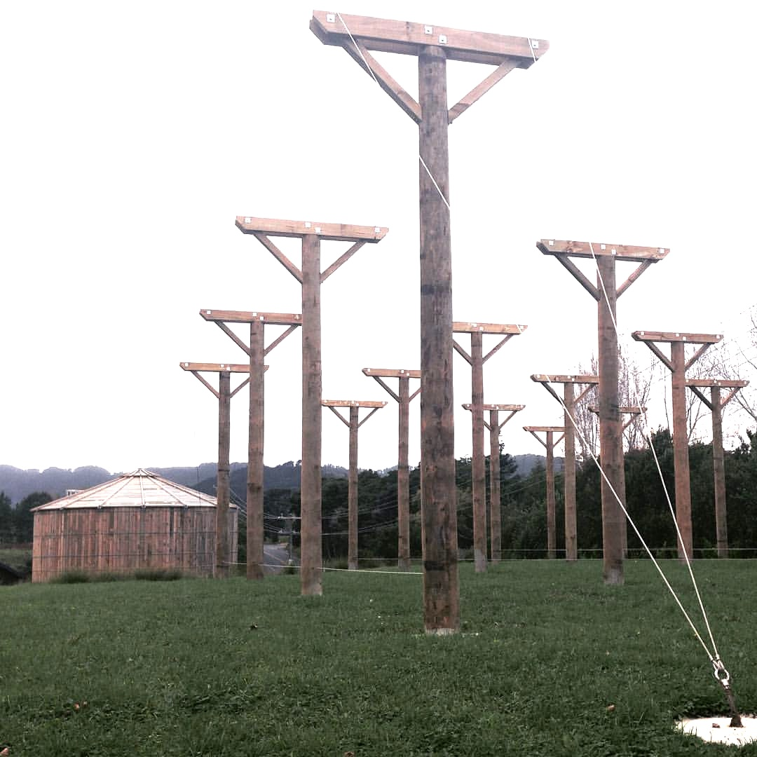 Matakana Sawmill Brewery: Hops Field   We laid the foundation by drilling a number of 2.5m holes and erected 6m poles.