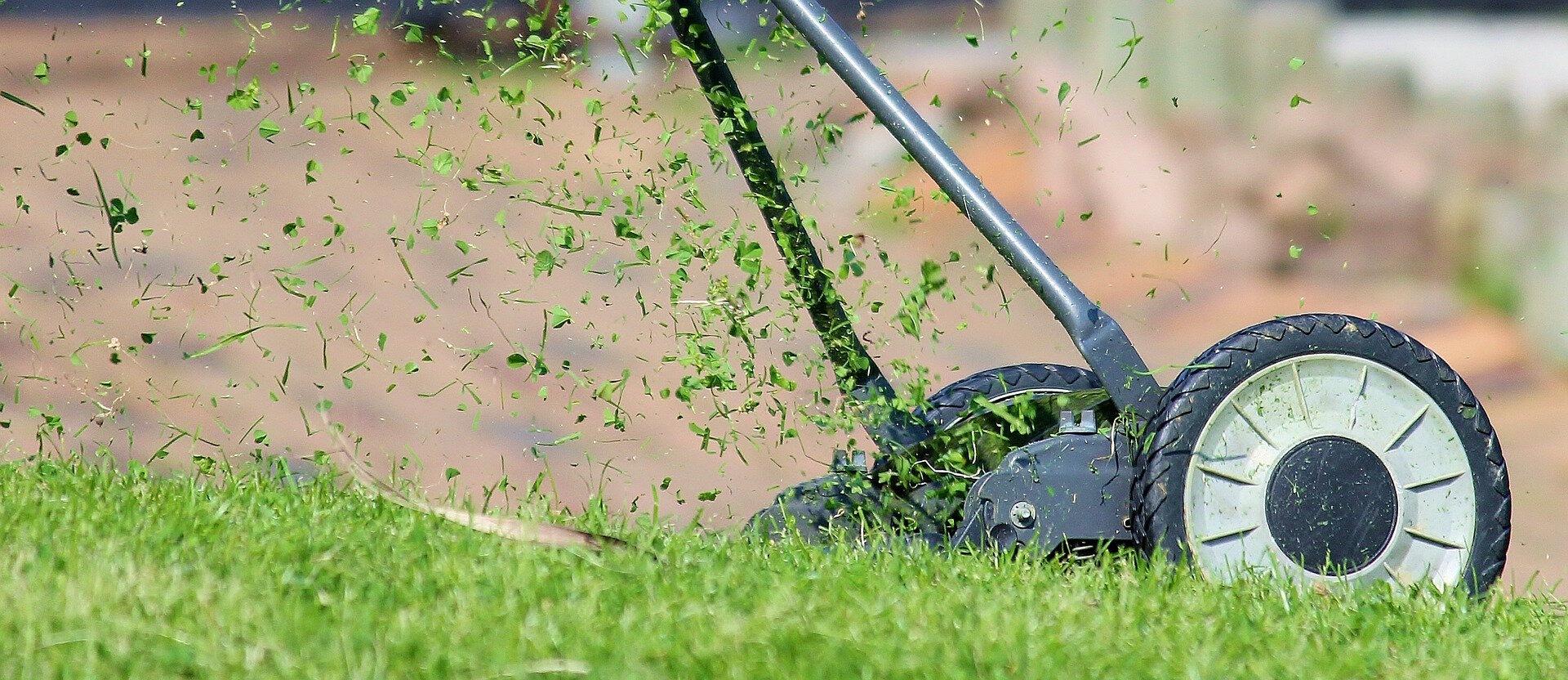 low maintainance garden ideas.jpg
