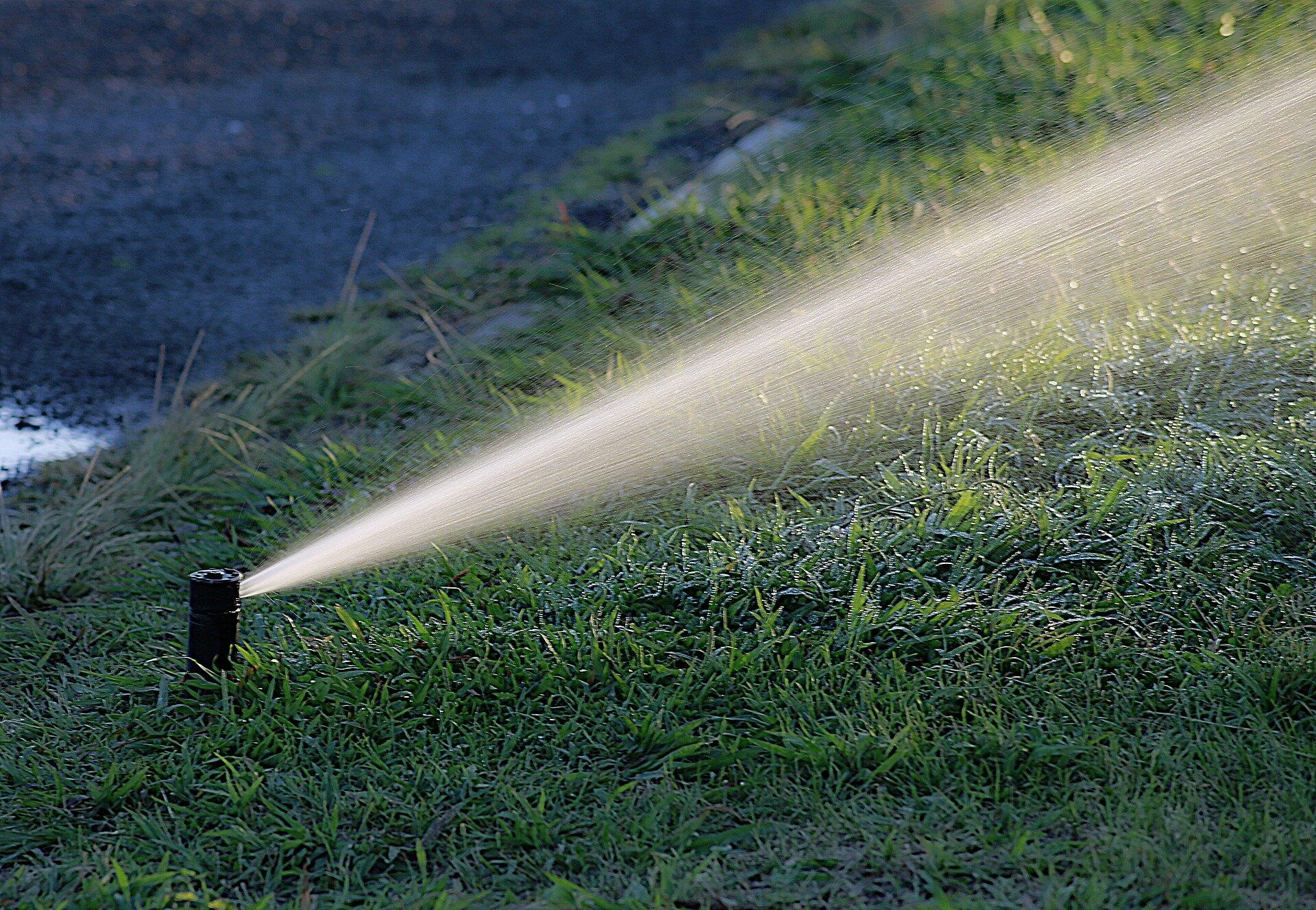 Matakana Irrigation.jpg