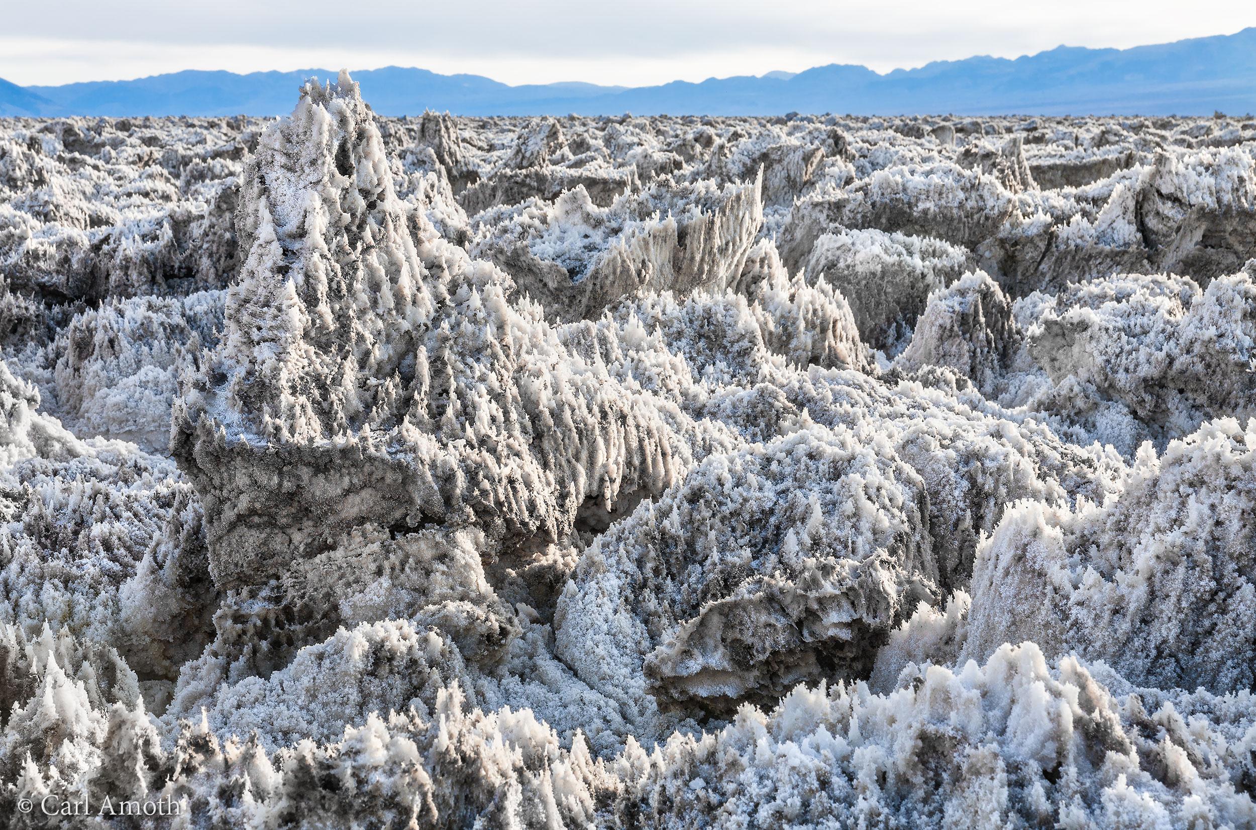 Nature's Salt Sculptures