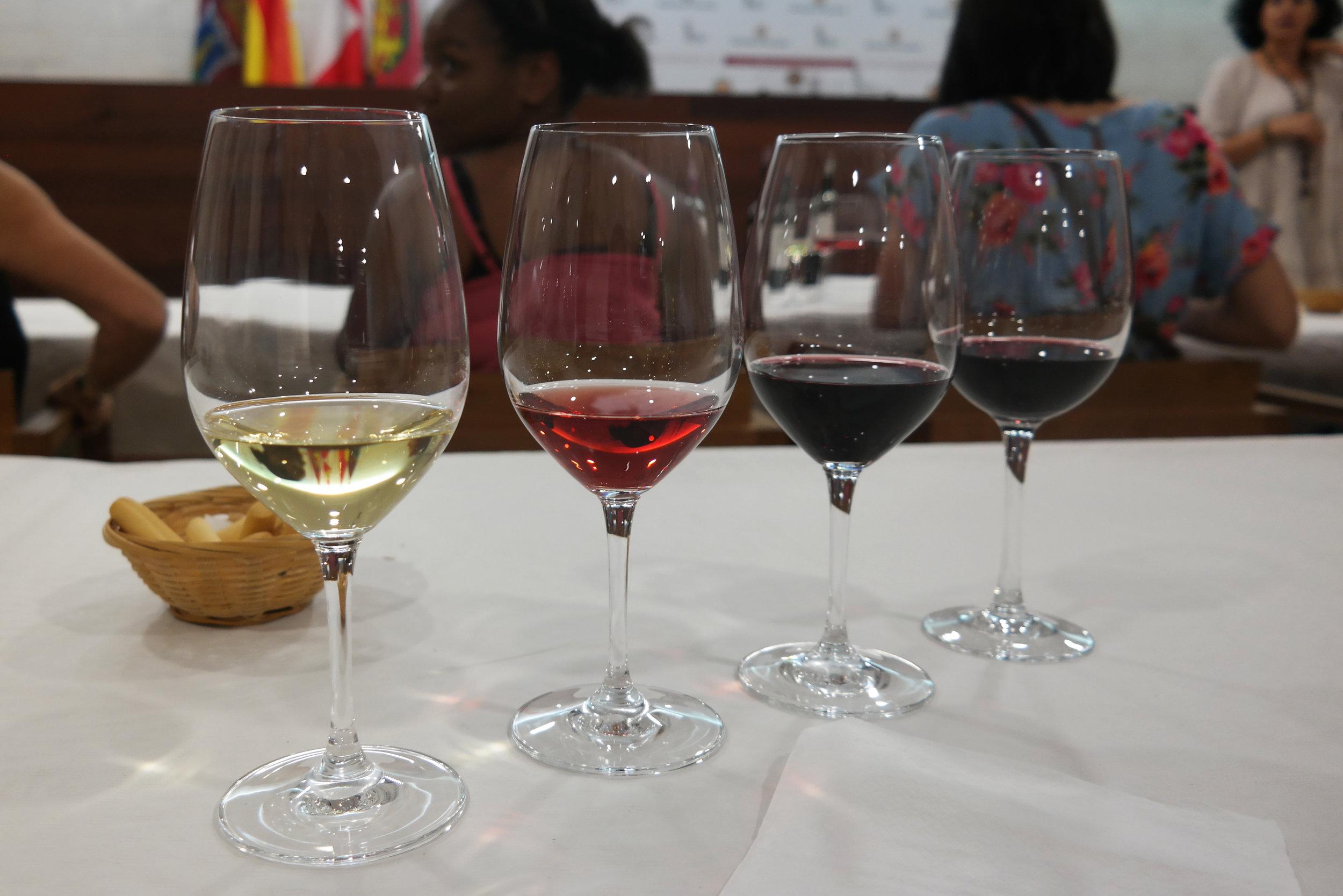 Cata de vino en Peñafiel.