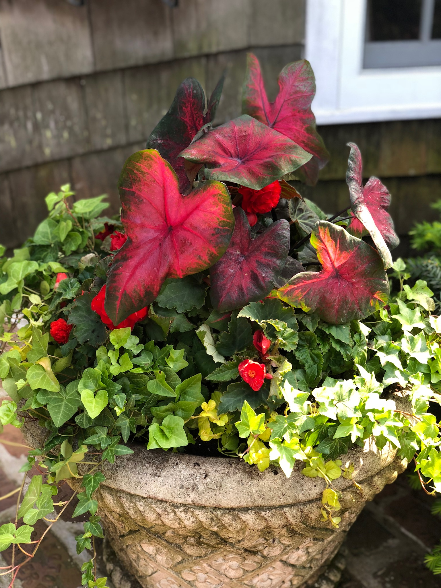 planter-garden-design-highland-park