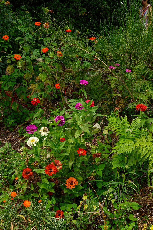 Keith M Photography_National Arboretum_10.jpg