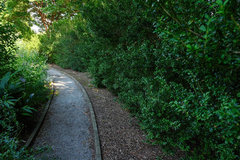 Keith M Photography_National Arboretum_14.jpg