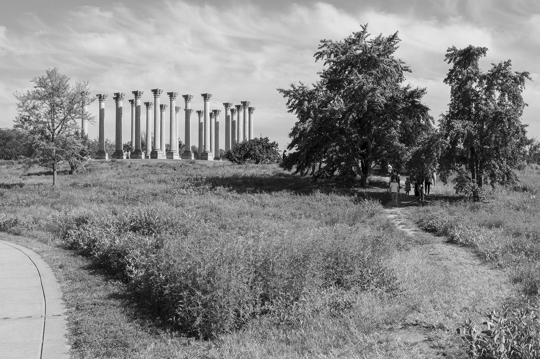 Keith M Photography_National Arboretum_16.jpg