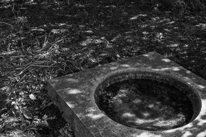 Keith M Photography_National Arboretum_27.jpg