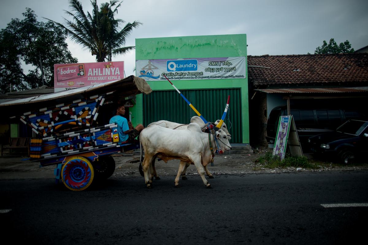 Yogyakarta Art Scene_Justin Mott_091.JPG