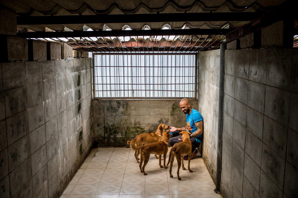 Soi Dog Foundation_Final Story Edit_Print Resolution_026.JPG