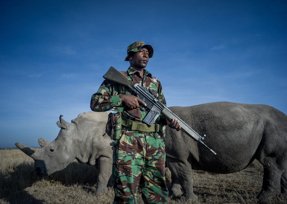 To Serve and Protect_The Last Remaining Northern White Rhinos_by Justin Mott_051.JPG