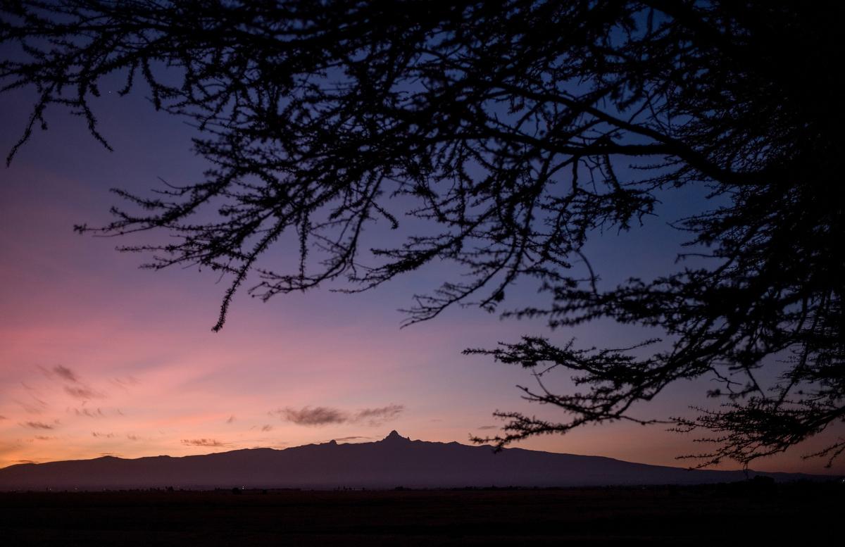 Mount Kenya overlooks Ol Pejeta conservancy in Central Kenya. The 360 km2 (140 sq mi). Ol Pejeta is home to Fatu and Najin, the world's last remaining northern white rhinos.