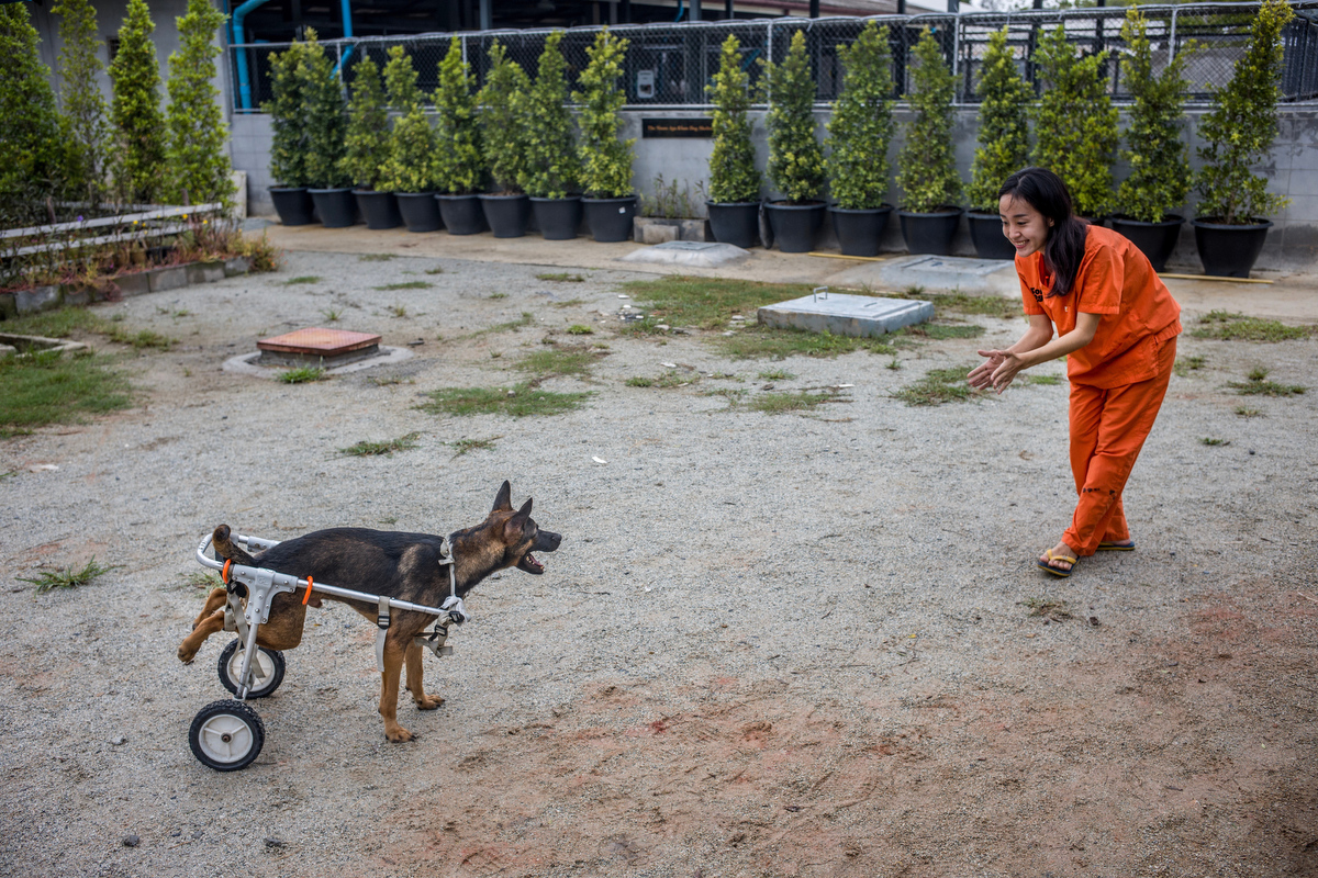 Aiw Wongla, 26, encourages Fanumpa in using her wheelchair during their training session.