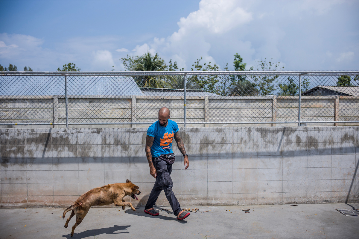 Curtis Brown takes one the dogs he trains for behaviorial troubles out and encourage him to play and interact with him.