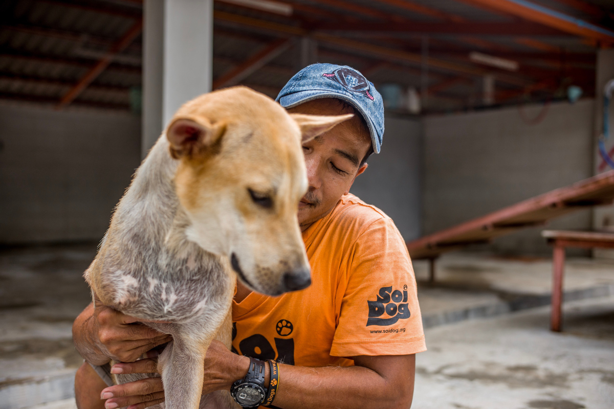 Caretaker Win Zaw 37, pets one of the dogs he looks after at the Soi Dog Foundation.