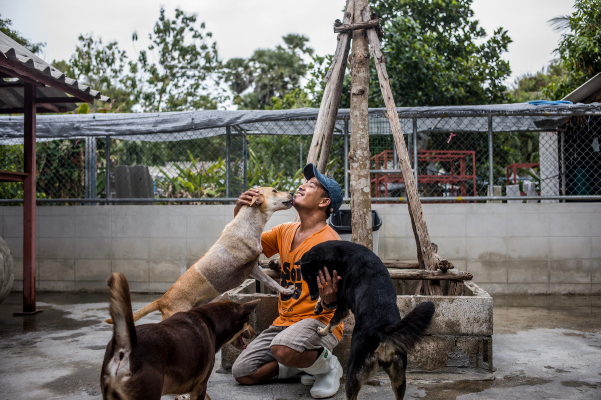 Win Zaw 37, has worked at Soi Dog since 2016 and his job as a caretakers is to look after the dog's well-being. He has an extreme passion for his job and every time he enters the shelter, the dogs shower him with love.