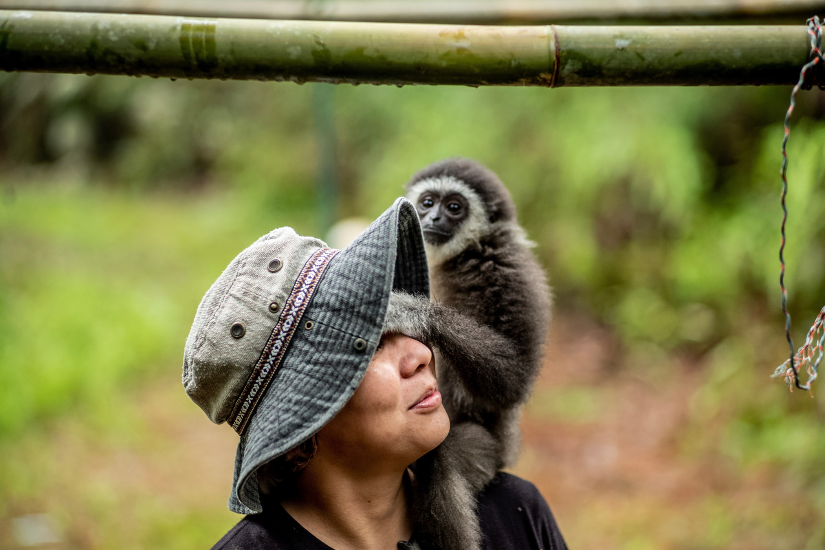Bam with Ebony, an infant gibbon that was purchased from the illegal pet trade and sent to the GPSM for rehabilitation.