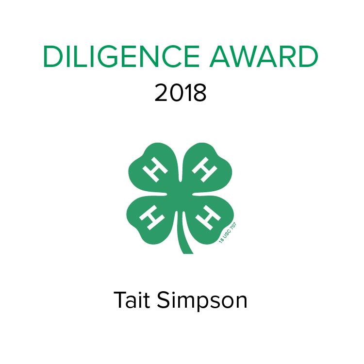 Diligence Award 2018.jpg