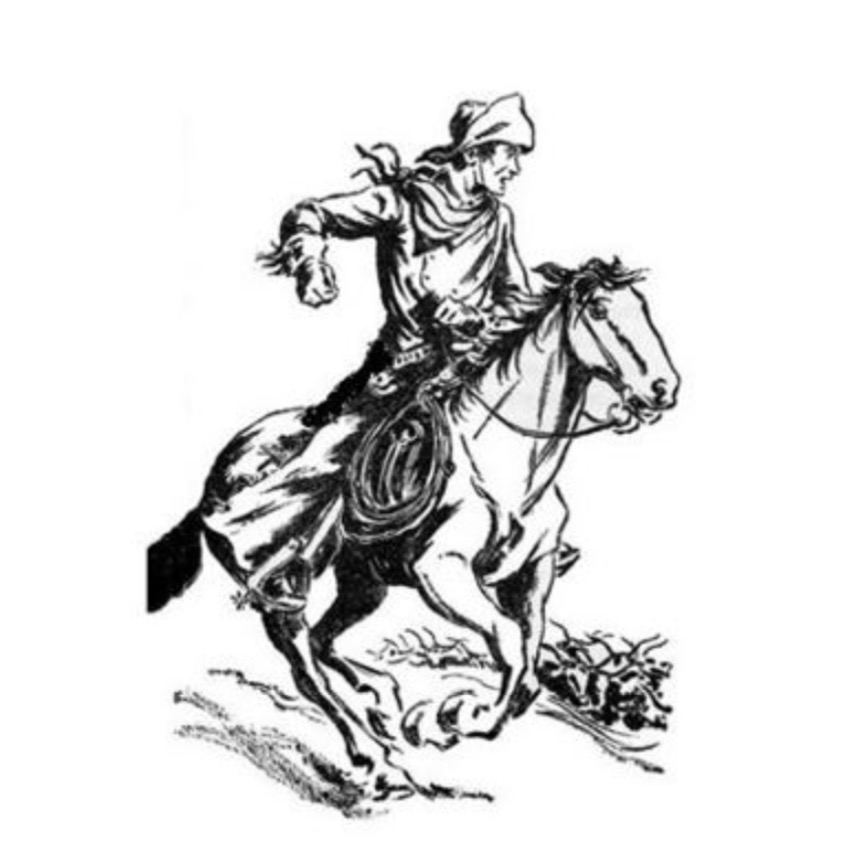 Western Heritage Rider.jpg
