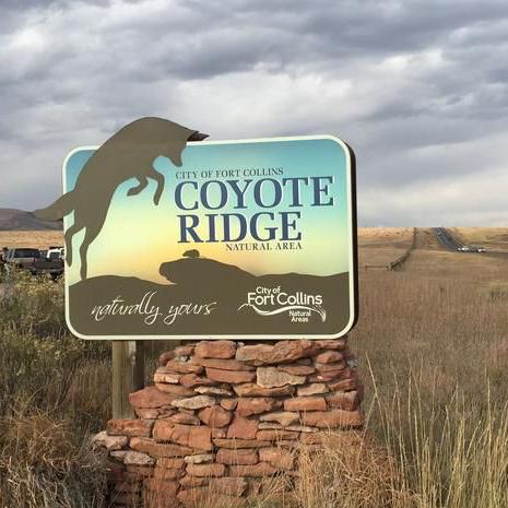 Coyote Trail.jpg
