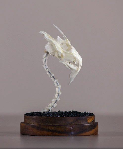 Dragon Skull #4
