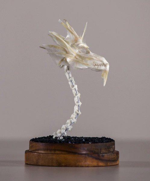 Dragon Skull #6