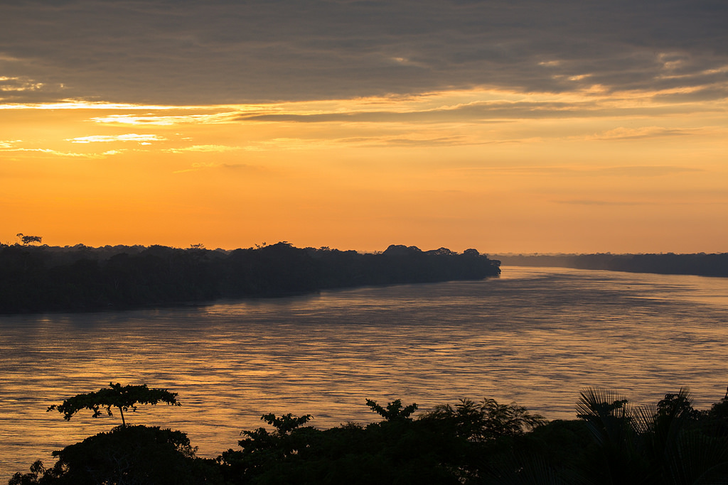 paisajes de la selva 2.jpg