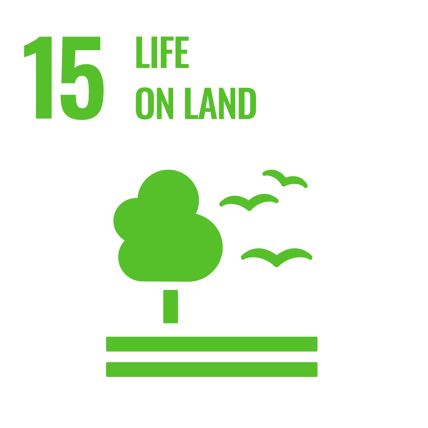 We support SDG 15 Life on land - …to halt biodiversity loss and promote the sustainable use of ecosystems. The UEBT Standard seeks to ensure the conservation, restoration and sustainable use of biodiversity and promotes the fair and equitable sharing of the benefits from the utilisation of genetic resources.