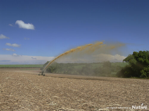 Organic liquid fertilization:  Liquid organic fertilizer being spilled on straw remainings.