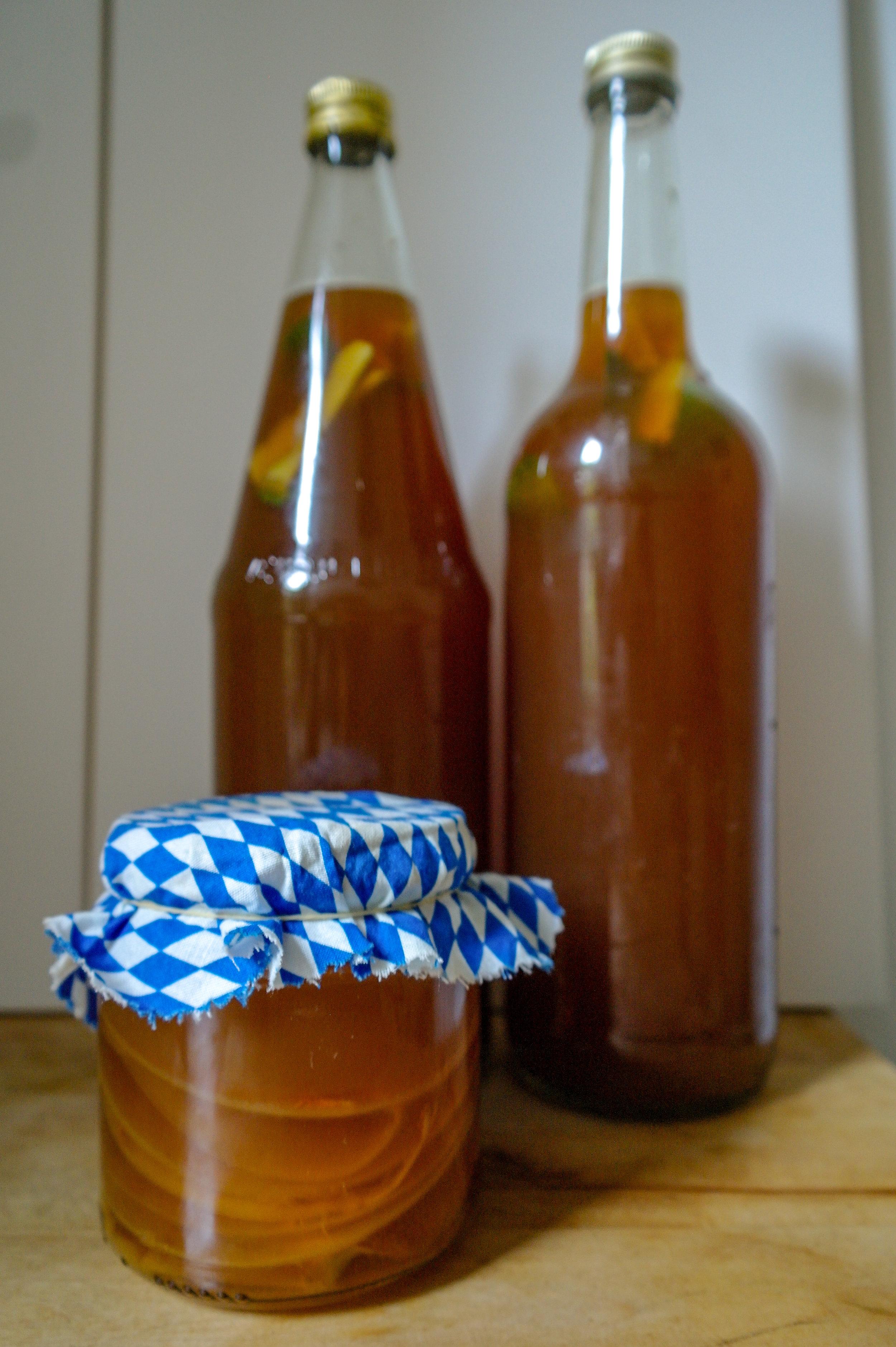 kombucha starter recipe