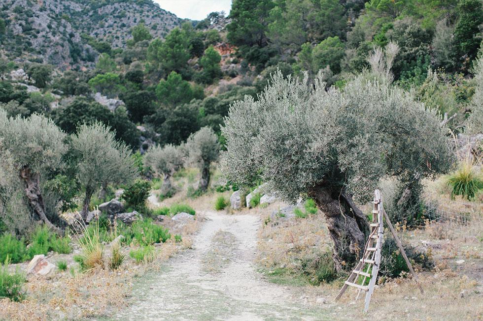 Traumanufaktur_Reisereportage_Mallorca_025.jpg