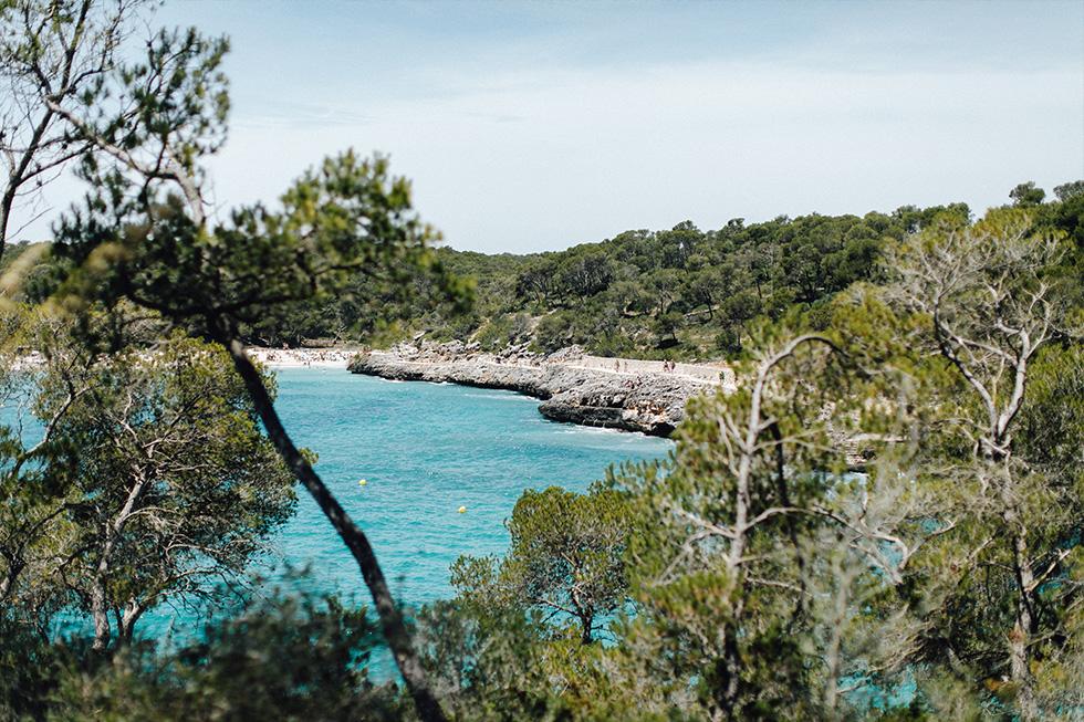 Traumanufaktur_Hochzeitsfotograf_Mallorca_Fincahochzeit_029.jpg
