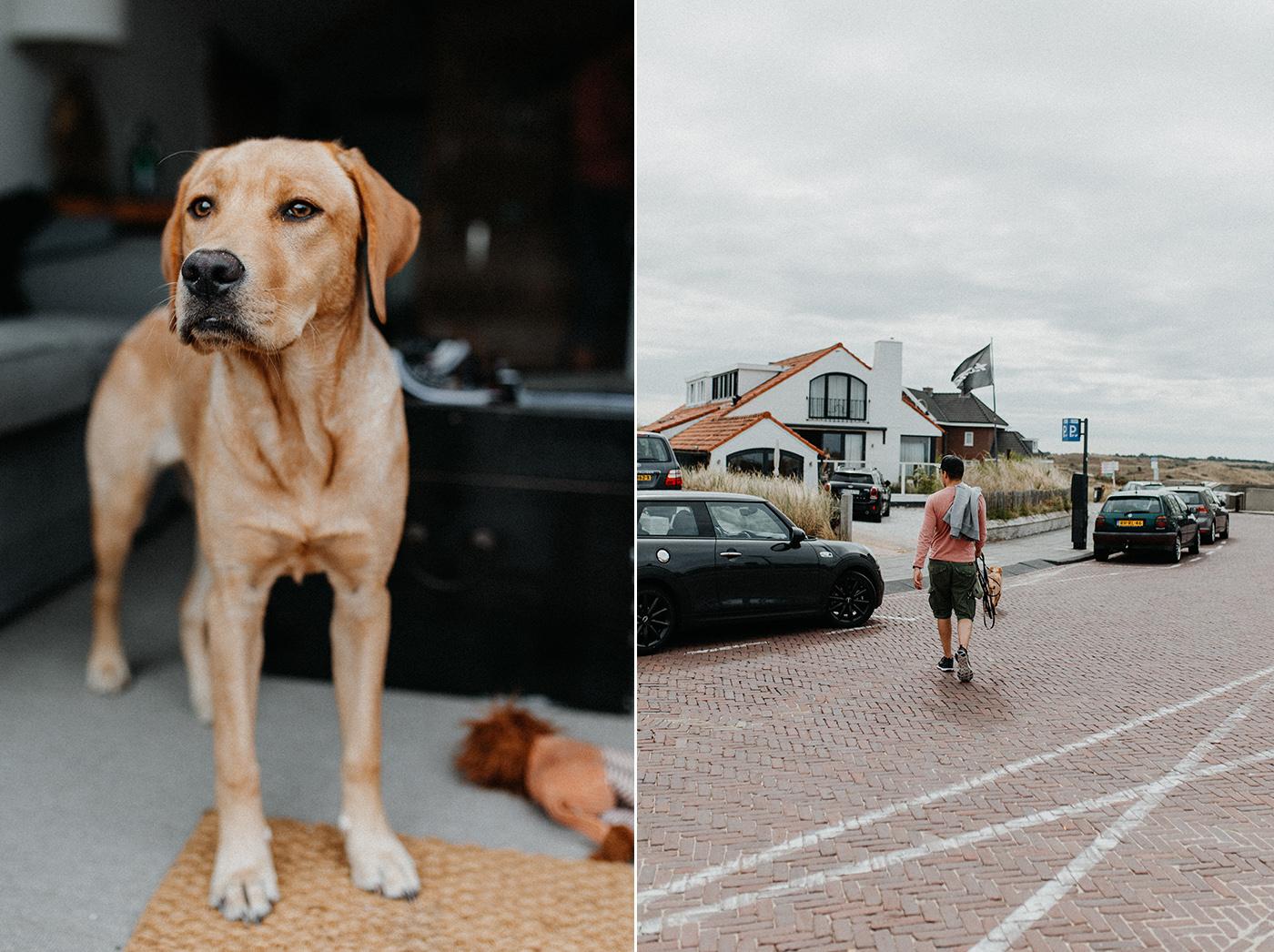 Traumanufaktur_Reisereportage_Niederlande_Zaandvoort_Urlaub_mit_Hund_17.jpg