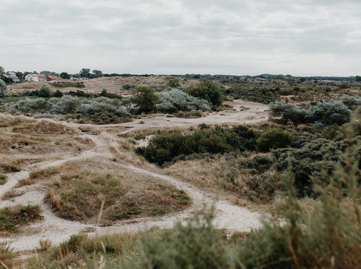 Traumanufaktur_Reisereportage_Niederlande_Zaandvoort_Urlaub_mit_Hund_25.jpg