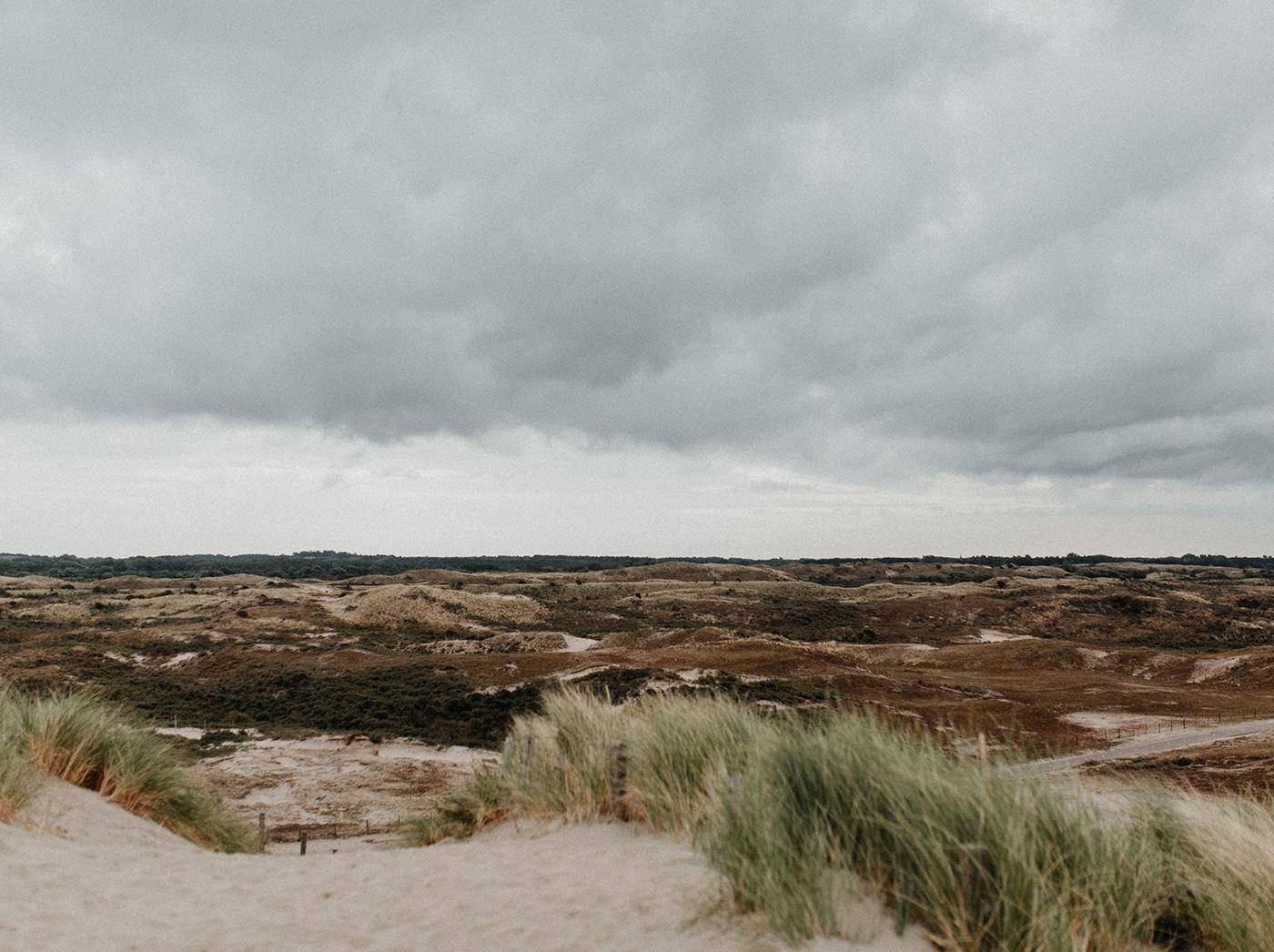 Traumanufaktur_Reisereportage_Niederlande_Zaandvoort_Urlaub_mit_Hund_57.jpg