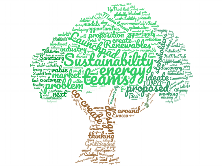 Sustainability Launchpad Wordcloud.png
