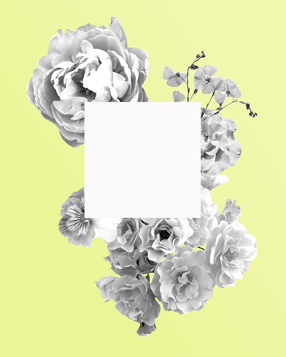 Flower T for Lifestylr