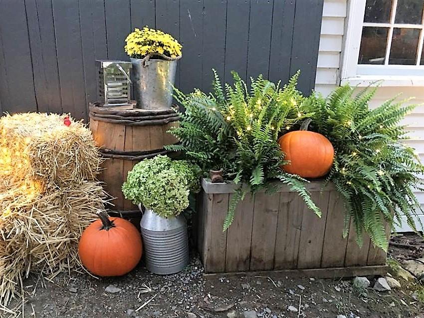 Hay and Pumpkins.jpg