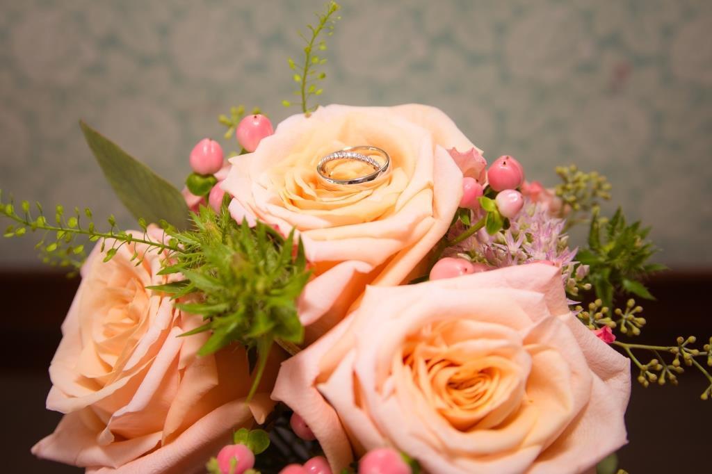 Close-Up Flowers Compressed.jpg