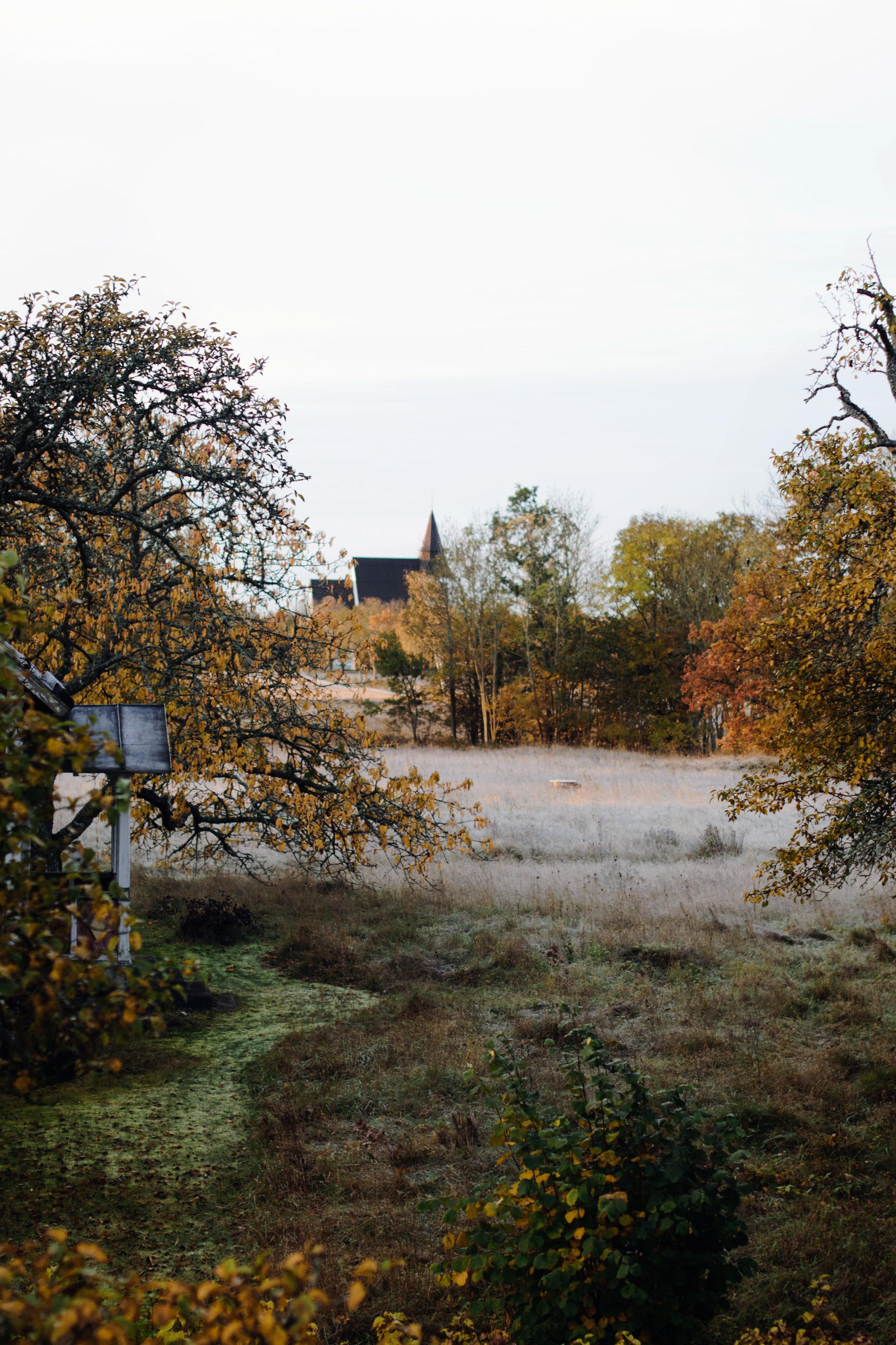 horsne-morgon.jpg