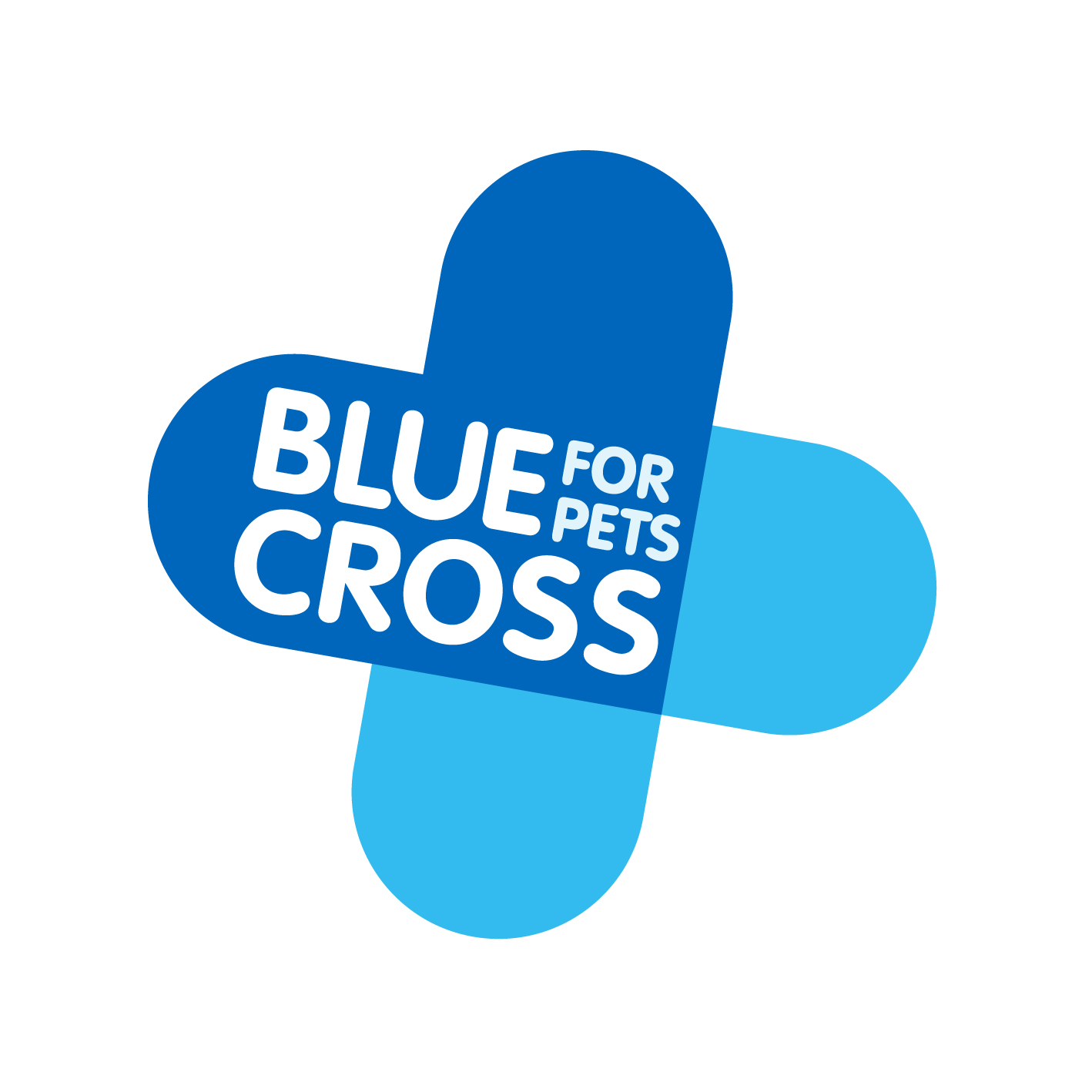 blue-cross-logo.jpg