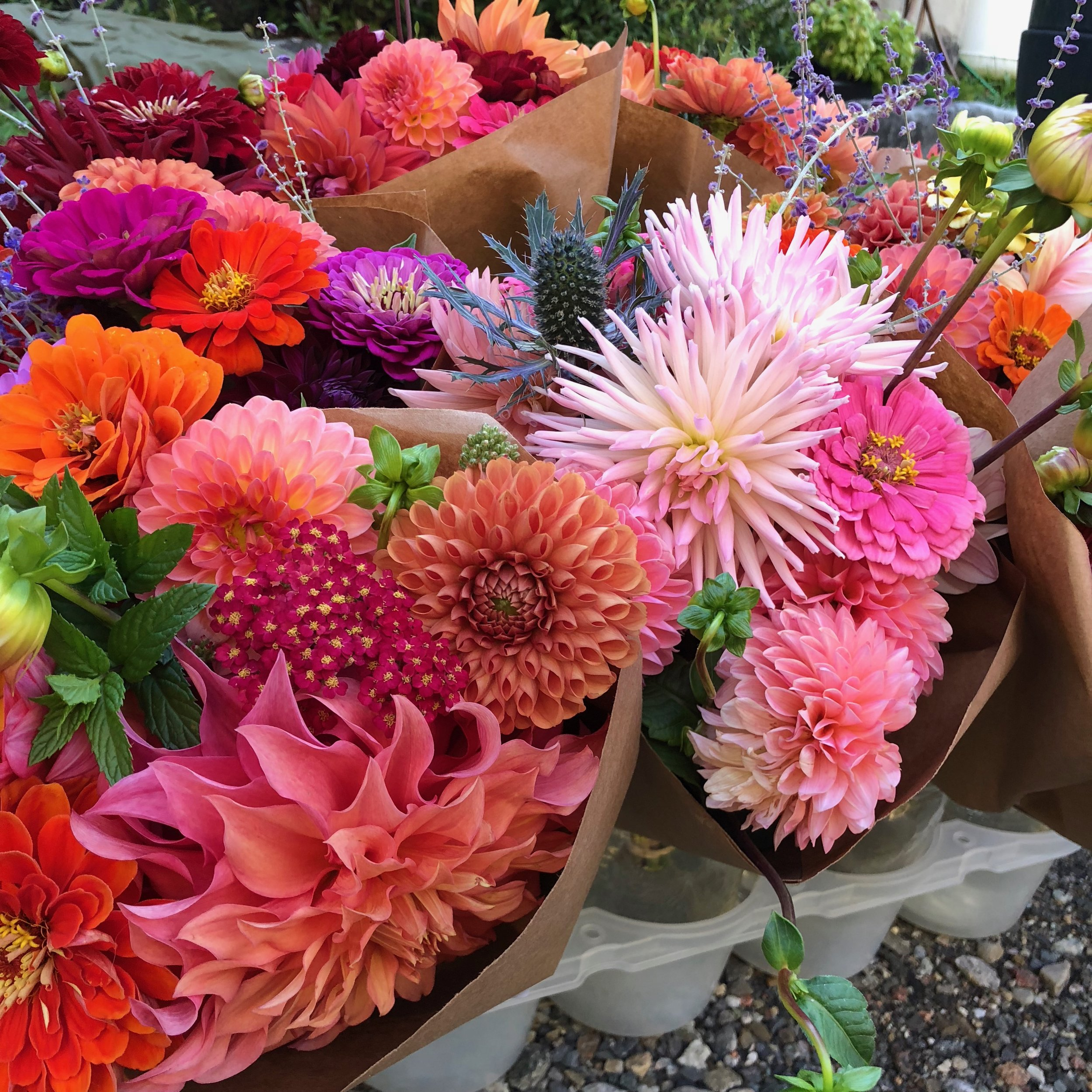 Samples of our Market Bouquets