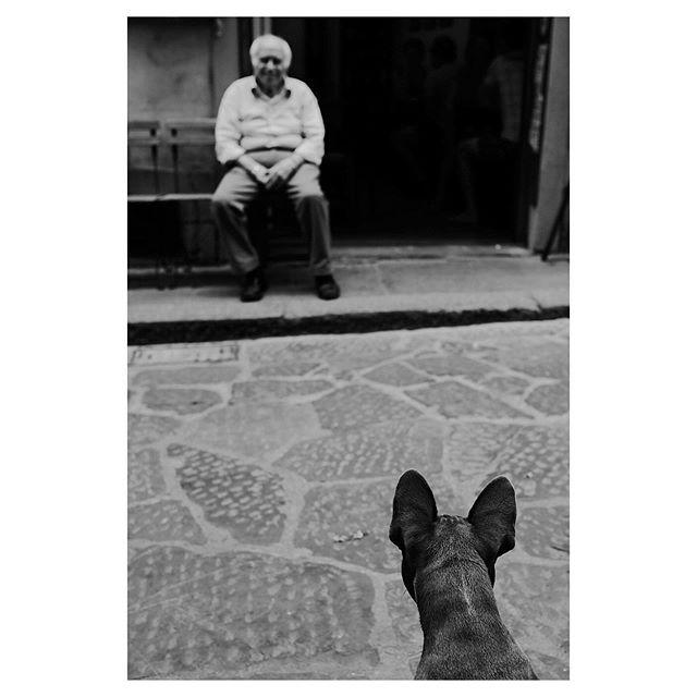 Florencia, Italia 2019-Calle 35 @fujifilmx_us  @fujifilm_northamerica @fujifeed @fondationhcb @_fujilove_  #streetlife #italy #florenceitaly #italystreet #streetphotography #streetphotographer #thedecisivemoment #ilovehcb #blackandwhitephotography #monochromatic #fujifilm #fujifeed #fujifilm_street #fujifilm23mm #fujifilmxpro2 #fujifilm_street #streethunter #ig_streerpeople #generationstreet #bnwmood #bnw_planet_2019 #contrastphotography #myfujilove #fujilove #pittiuomo96 #pittiuomo #florence #streetizn #godlover #streetdogs