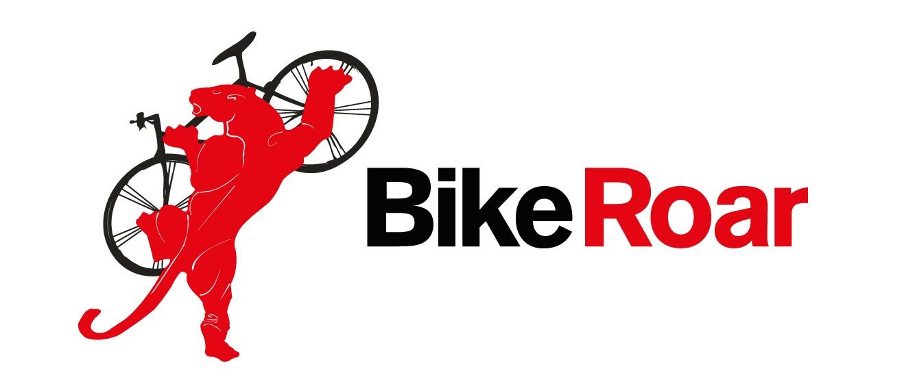 BR_logo_horizontal_1500x750_left.jpg