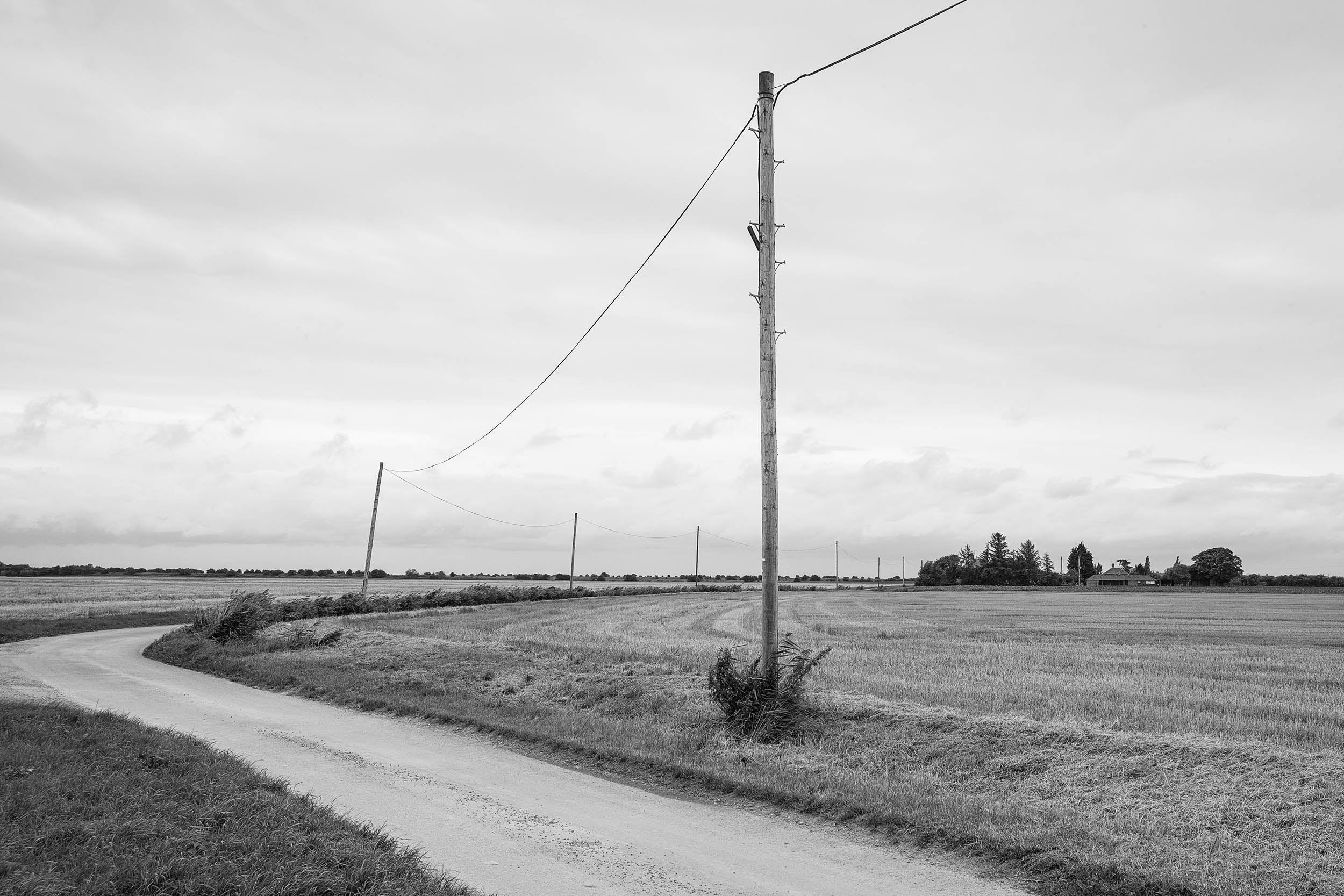 Telegraph_Poles_East_Coast_L1002776.jpg