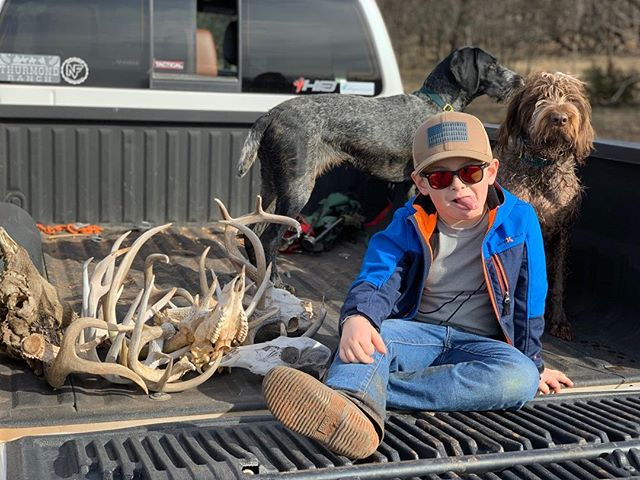 Good day in the woods! #shedhunting #sheddog #gwp #birddog #deerhunting