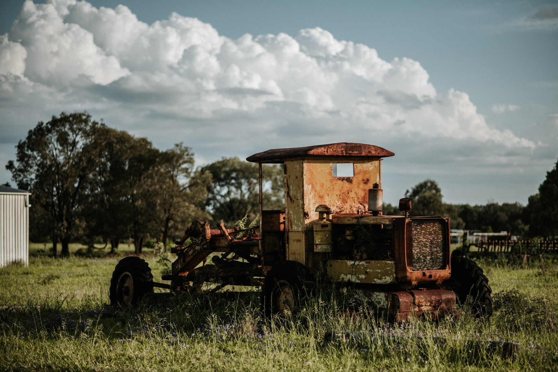 country_queensland_photography_scotts-50.jpg