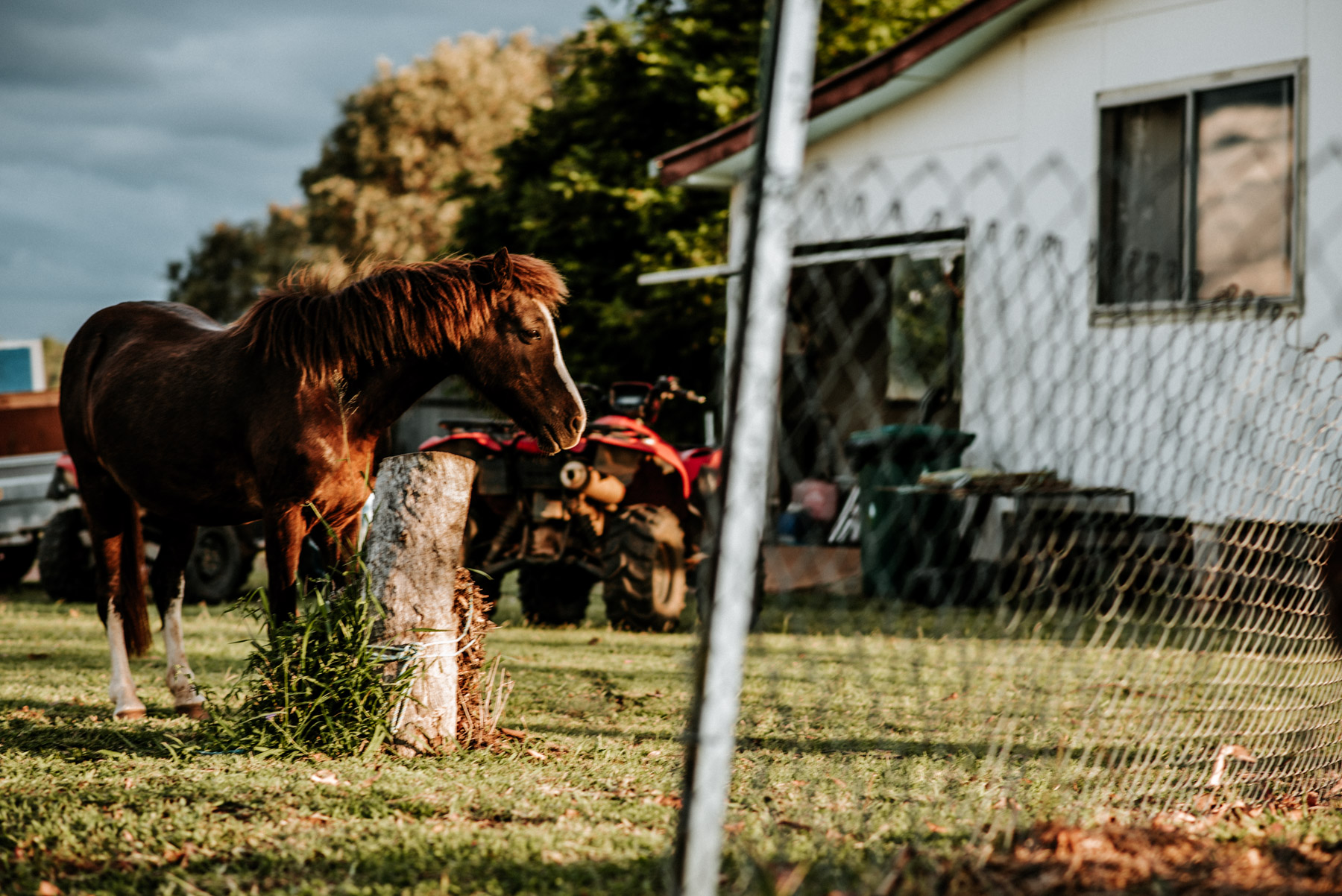 country_queensland_photography_scotts-83.jpg